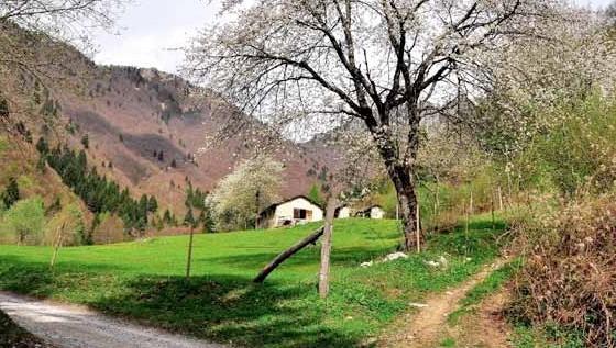 Sull antica via ai monti di riva - Riva barche sito ufficiale ...